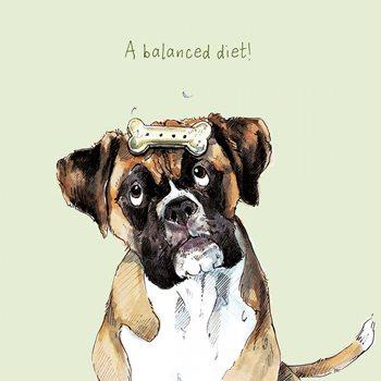 A balanced diet . Birthday card