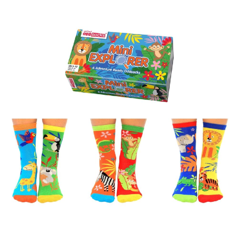Mini Explorers Socks Gift Set