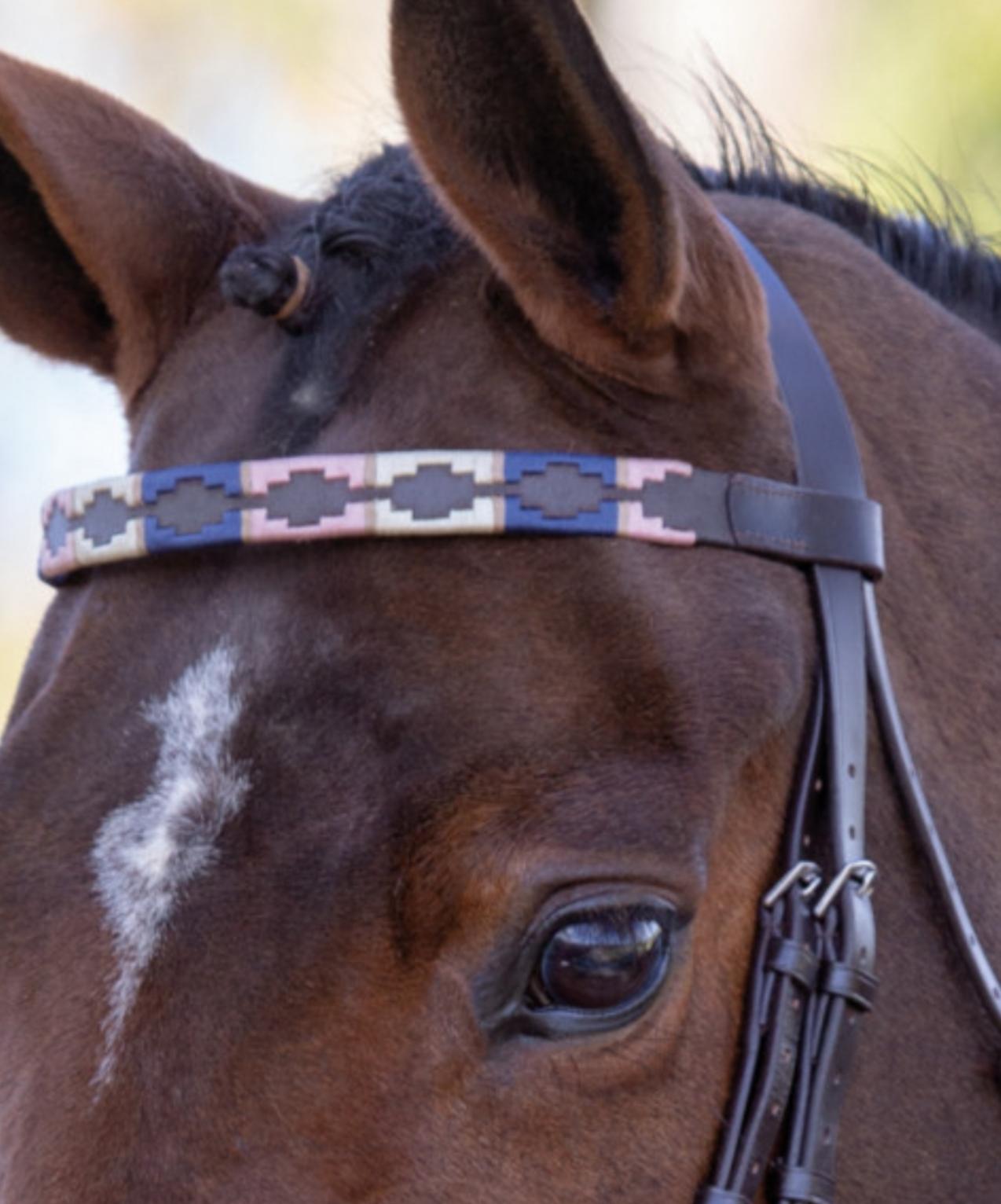 Pannband Blenheim Leather Polo
