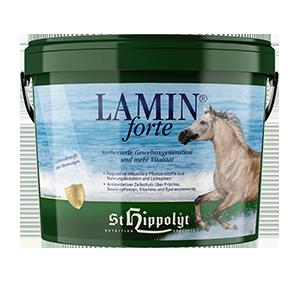 Hippolyt Lamin Forte