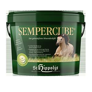Hippolyt SemperCube