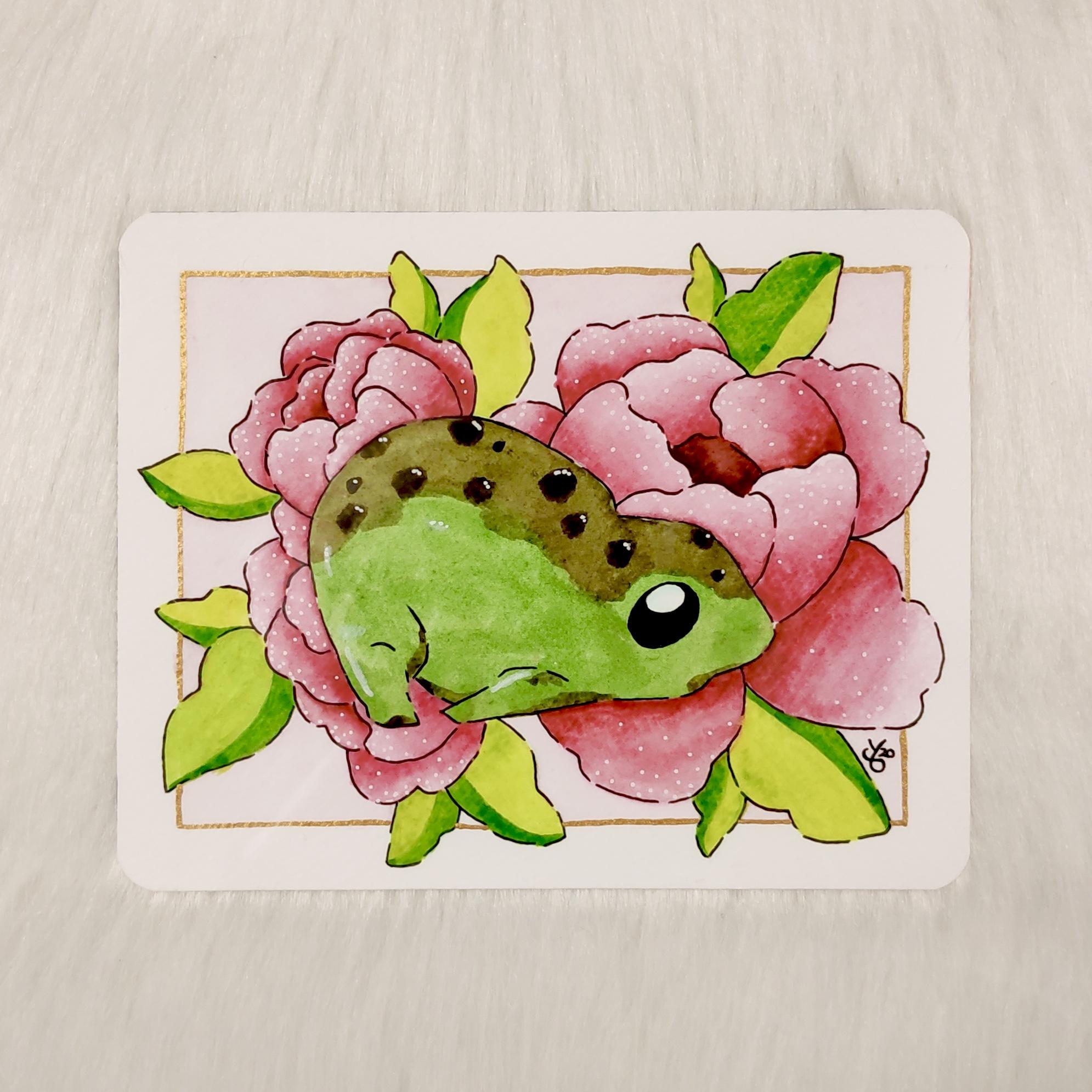 Lazy Froggo