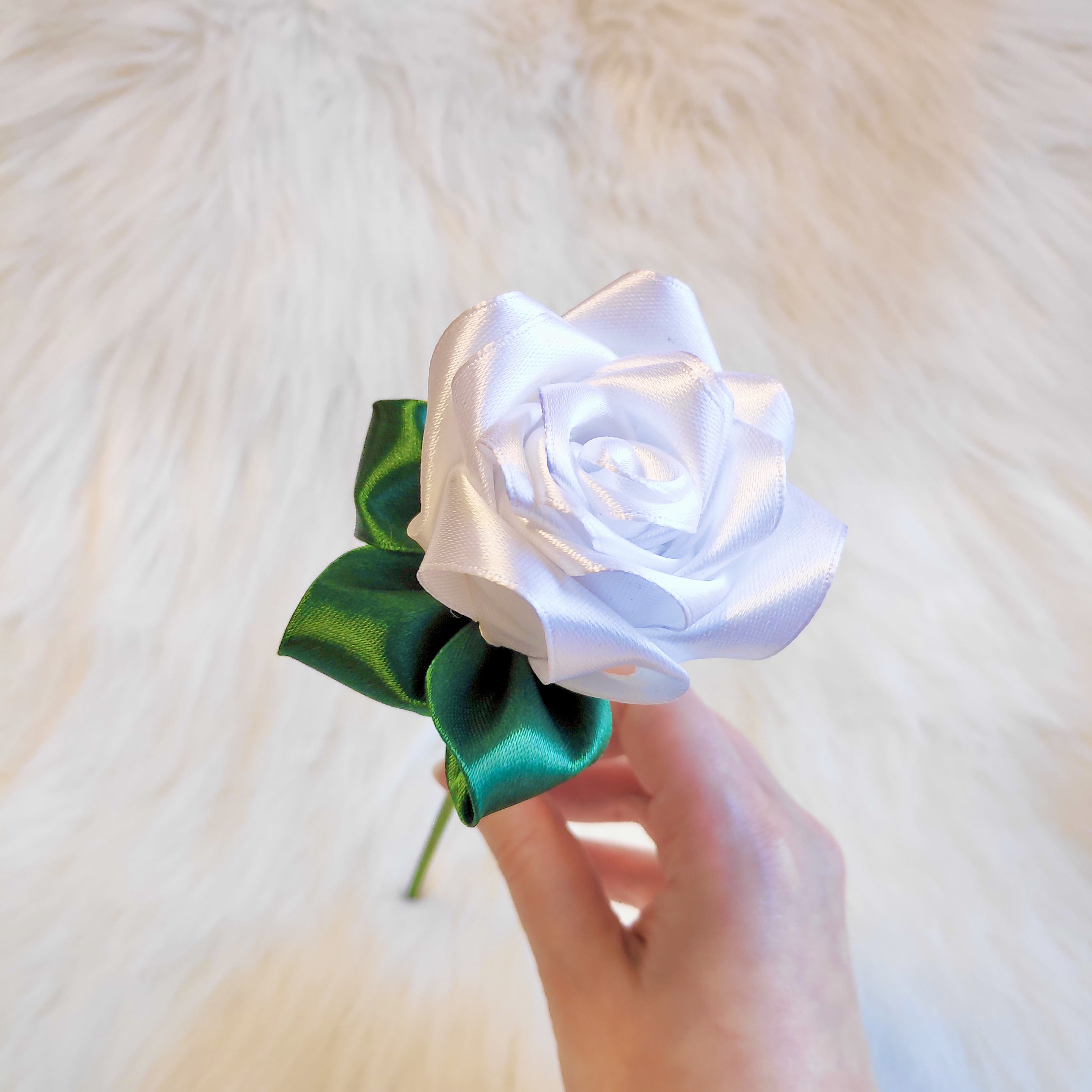 White Satin Rose