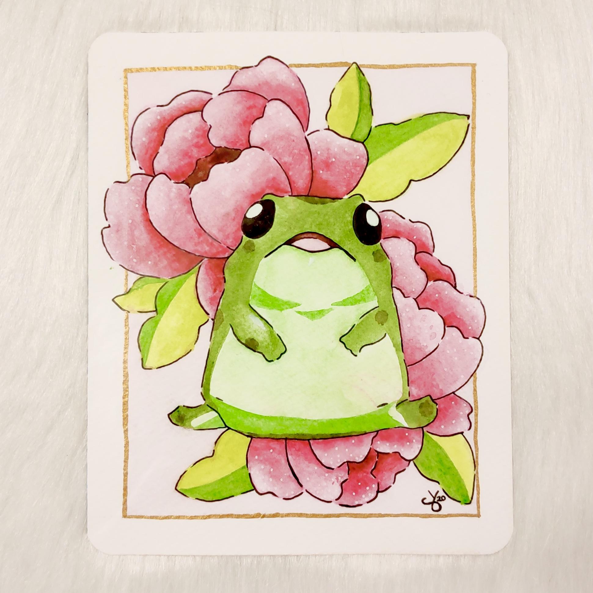 Amazed Froggo