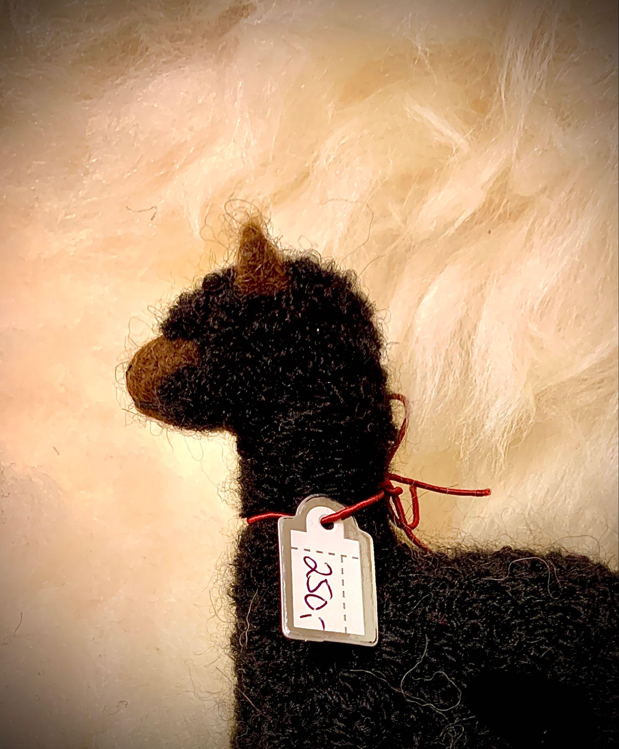 Alpakka, nålefiltet, sort