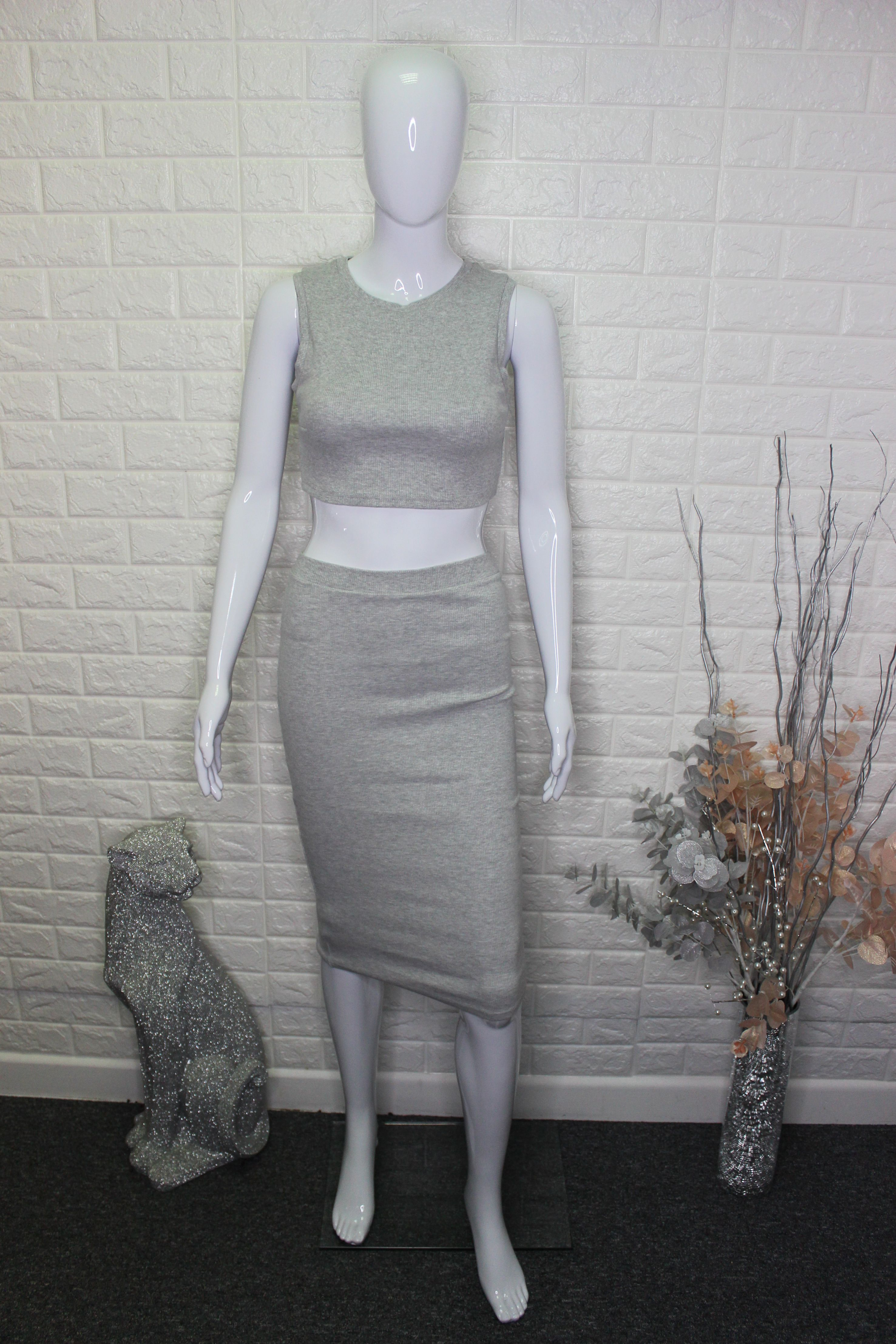Light Grey 2 Piece Skirt/Top Set