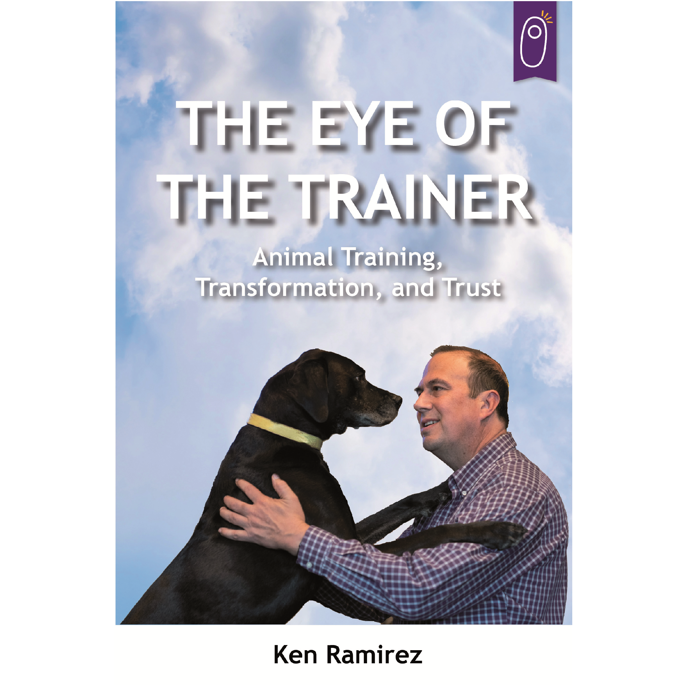 The Eye of the Trainer