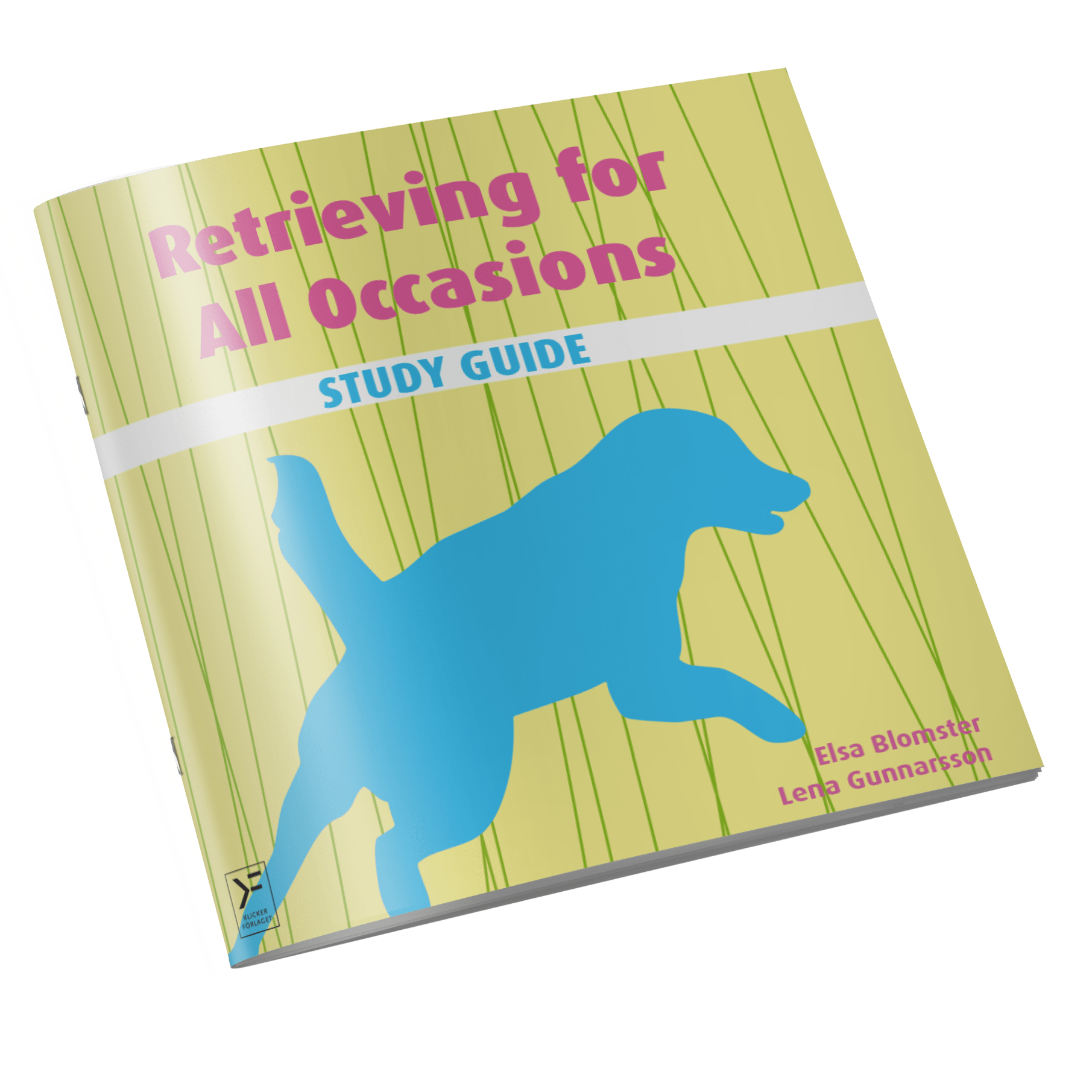 Retrieving for All Occasions – Study Guide