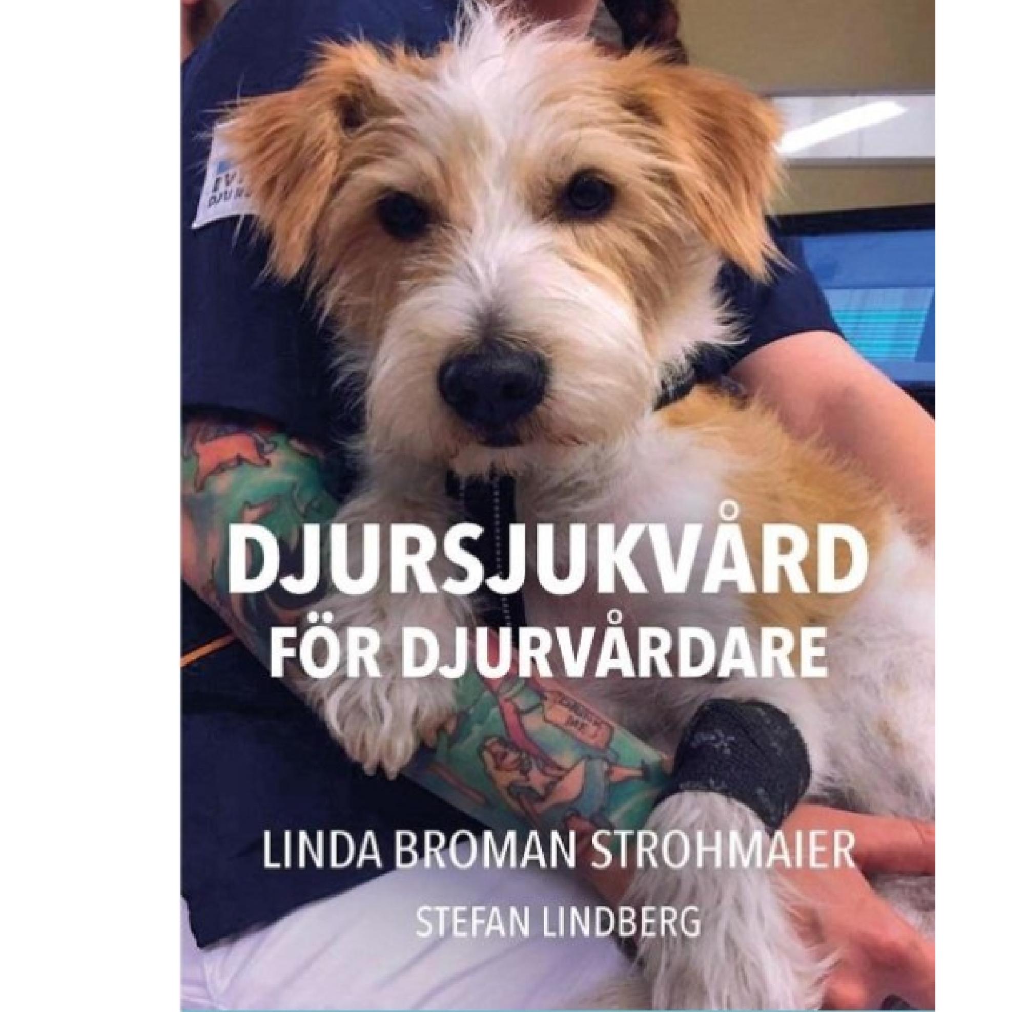 Djursjukvård för djurvårdare