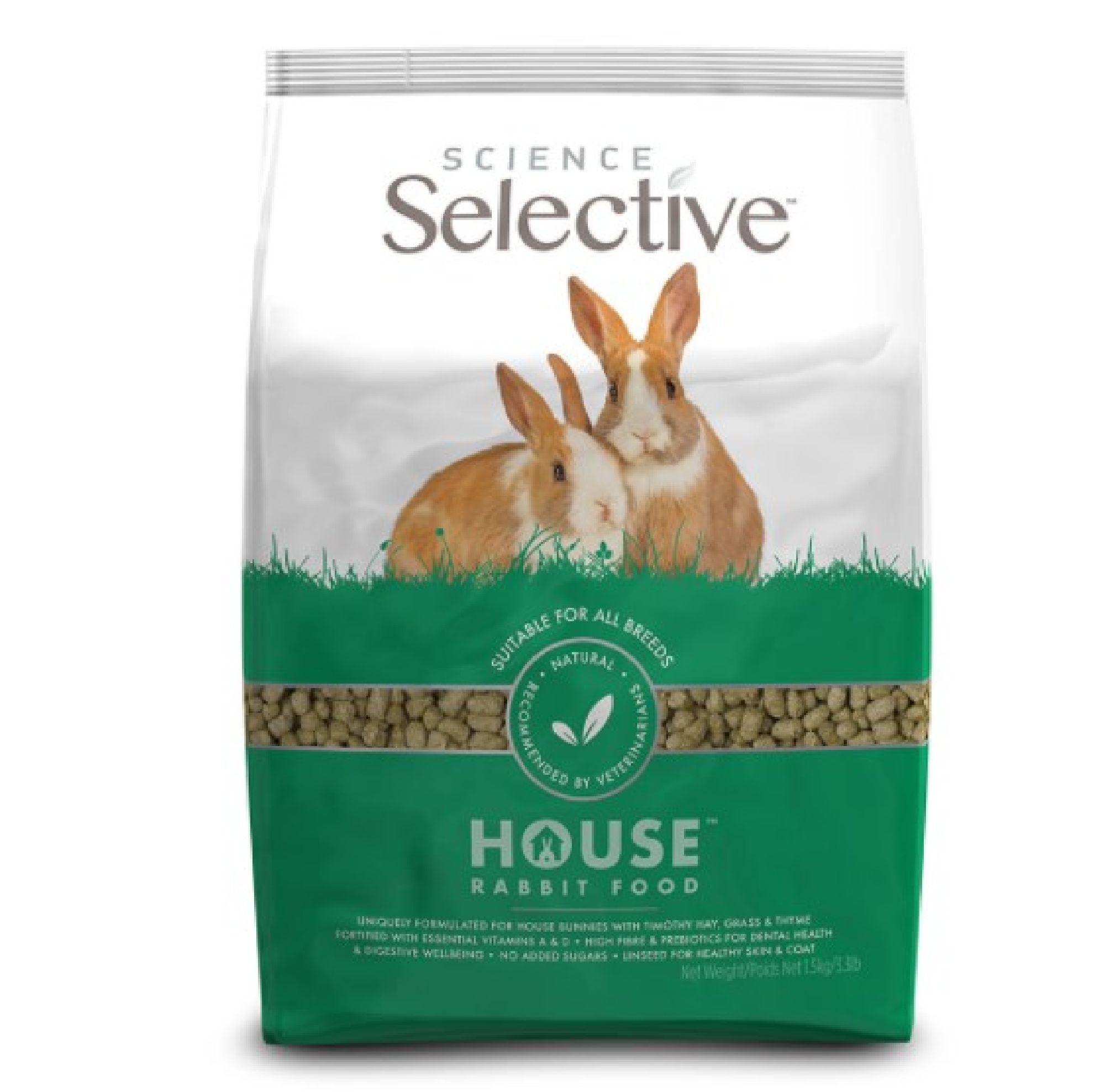 Selective House Rabbit