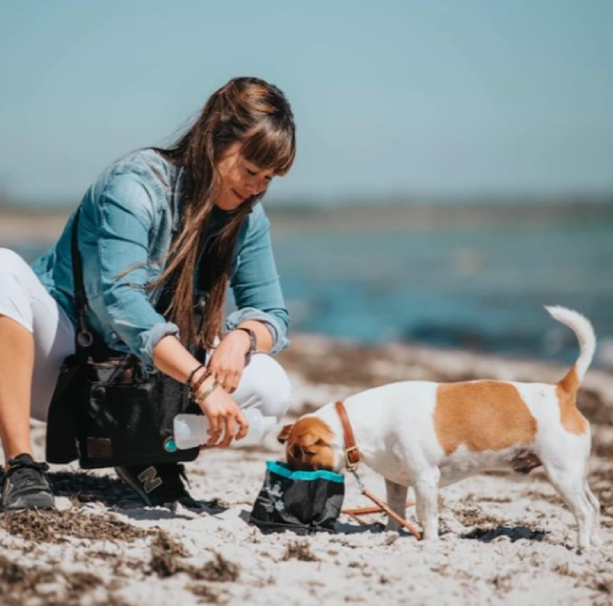 DogCoach Vattenskål i tyg, ihopfällbar