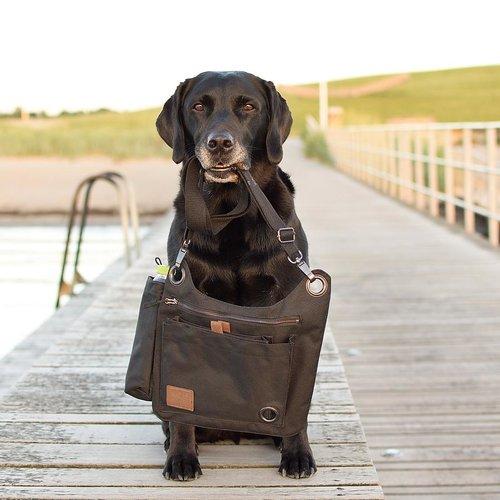 DogCoach Doghandler bag – vol 2.0