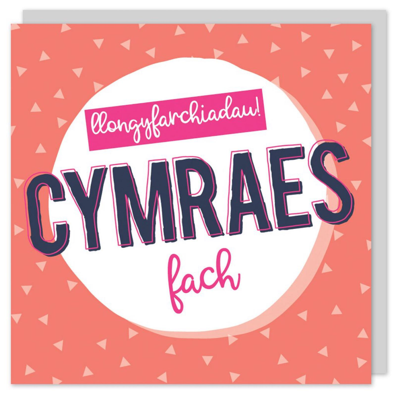 Cymraes Fach (POP11)