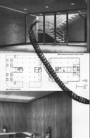 Baby Snakes Hatching. Ruins. Ruins. - Mai Hofstad Gunnes