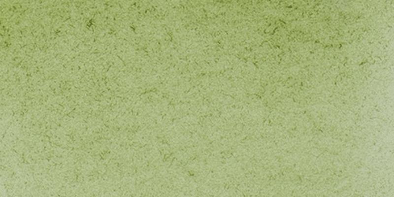 14 516 Green earth