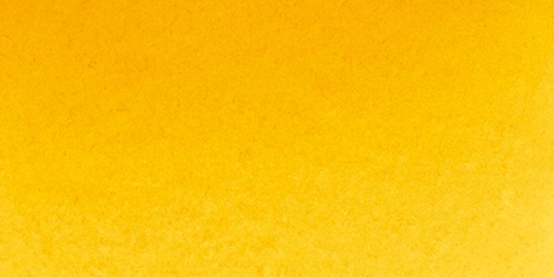 14 219 Turne's yellow