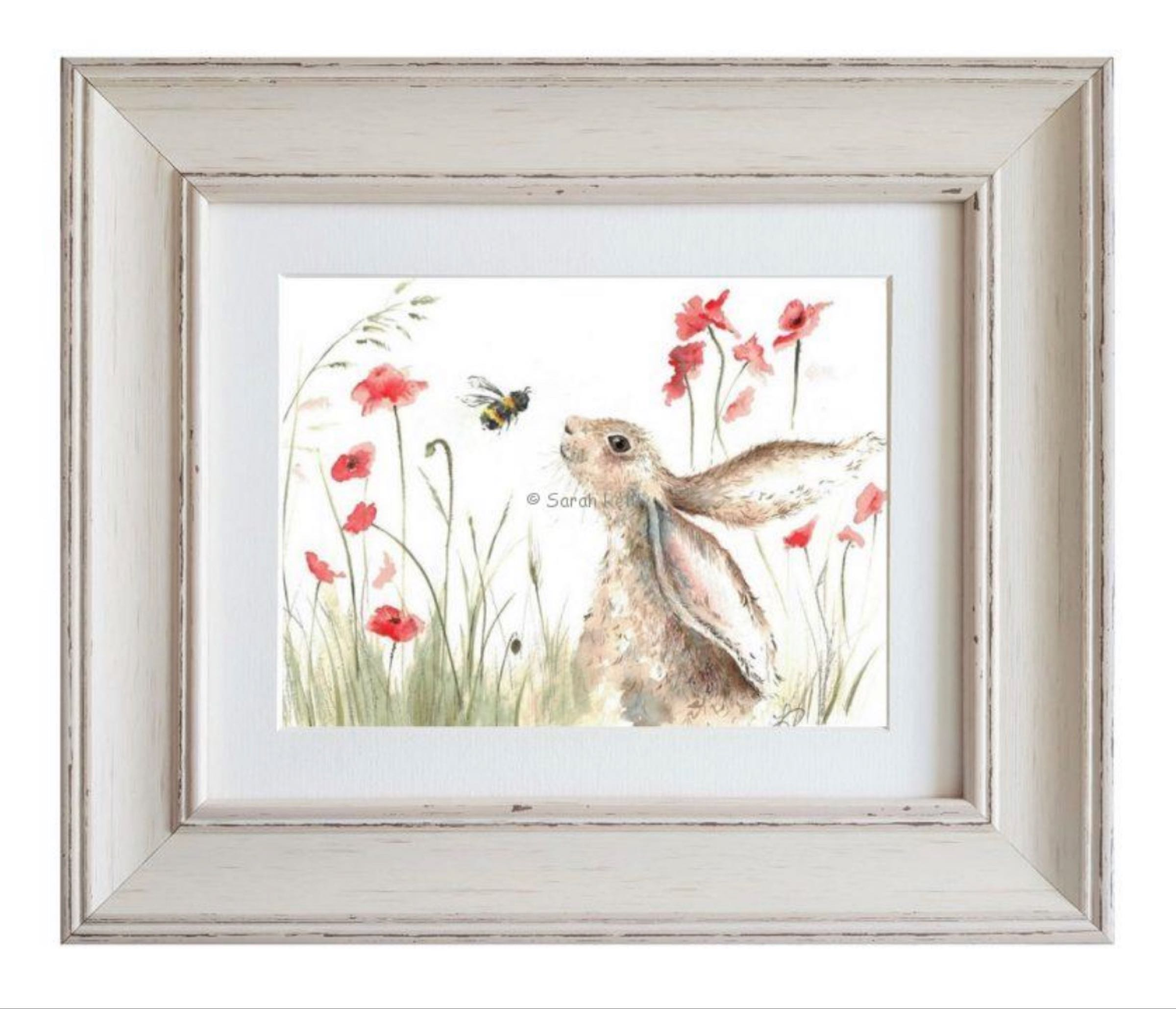 Bee Lovely Framed Print by Sarah Reilly  28cmx33cm