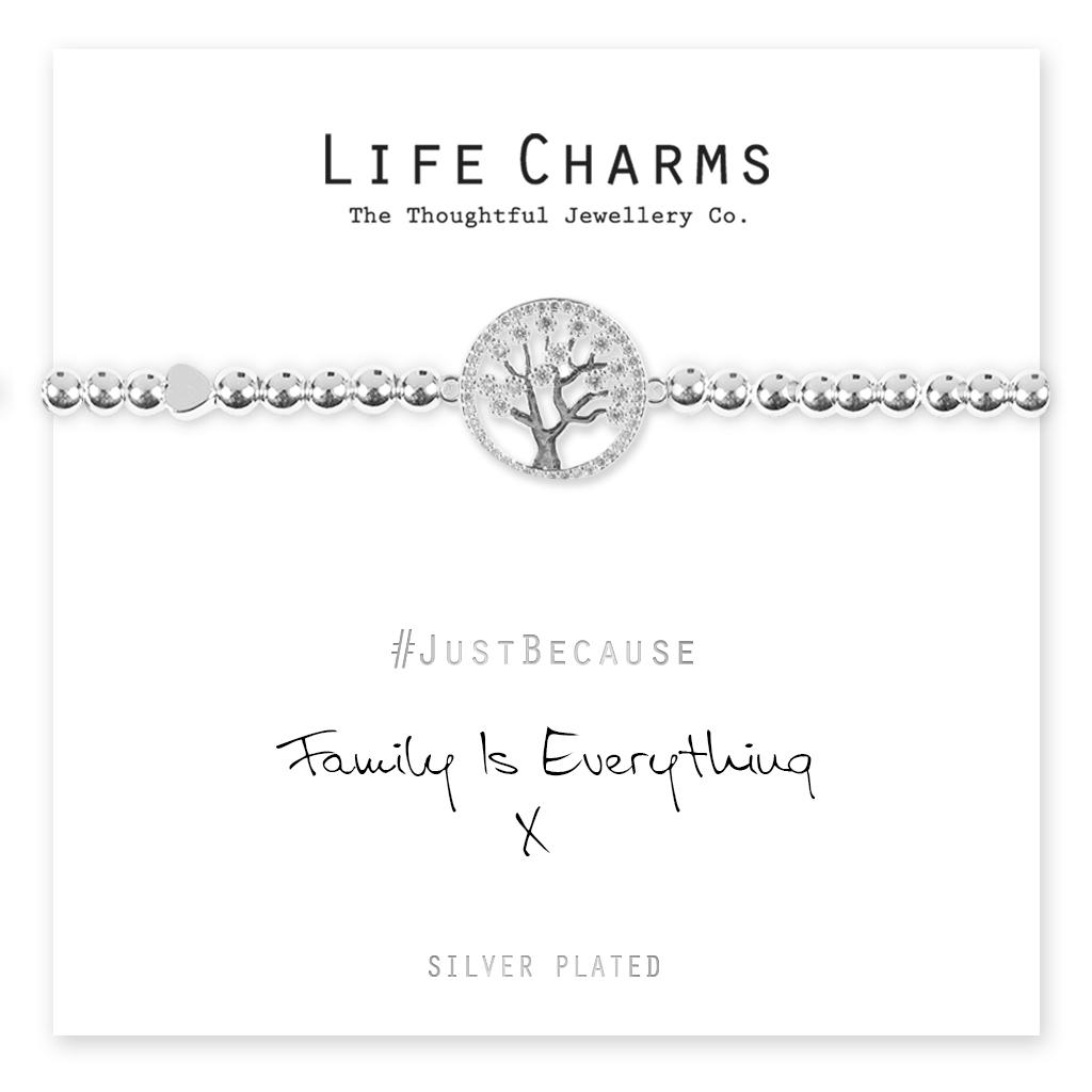 Life Charms Family