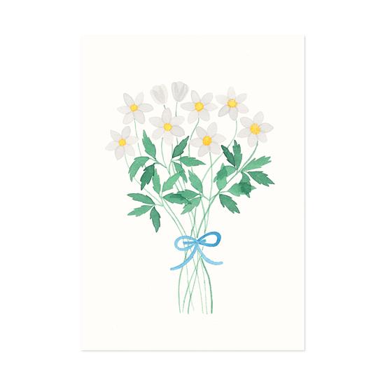 Valkovuokkokimppu postikortti - Polka paper