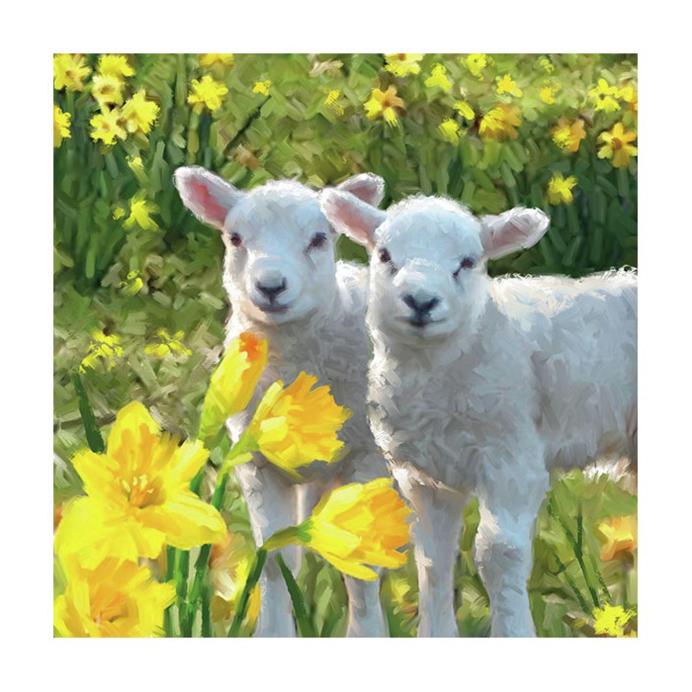 Ambiente Servietter / Napkins - Little Lamb