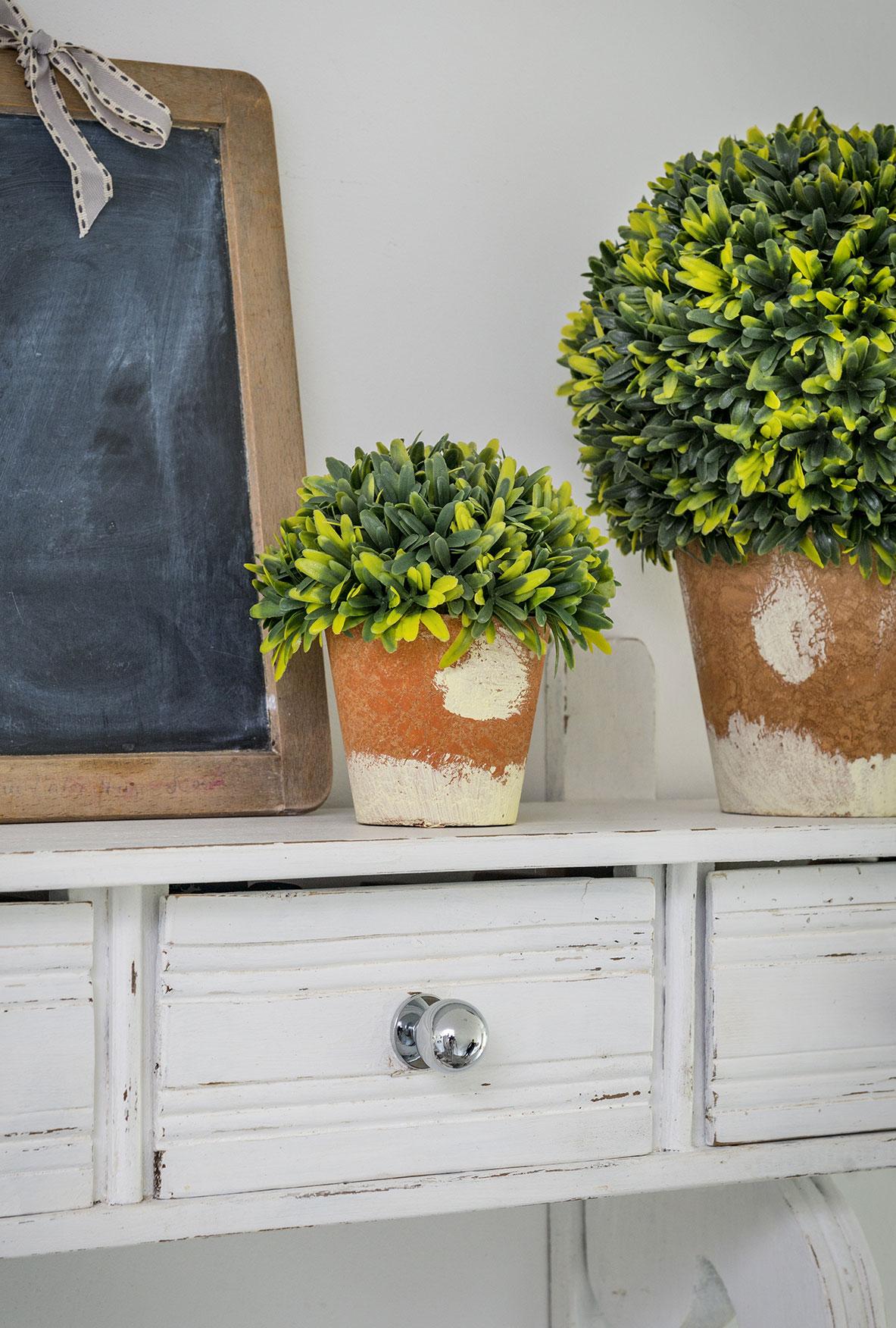 Faux Box Tree In A Terracotta Pot