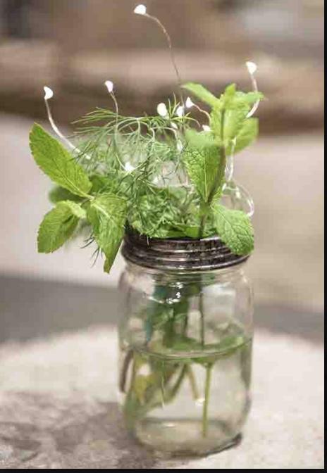 WATER SAFE LED LIGHTS FOR FLOWERS