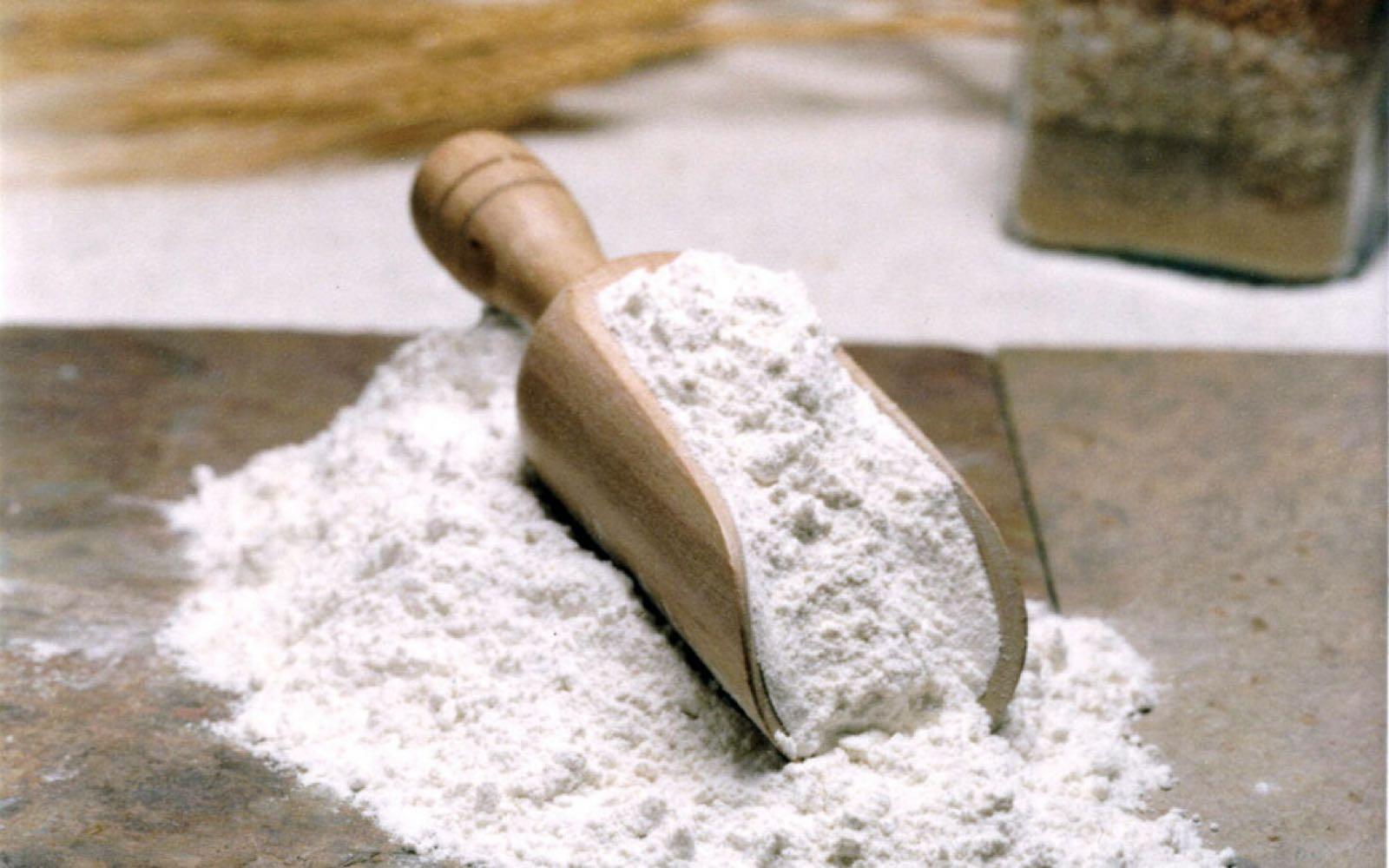 White Bread Flour