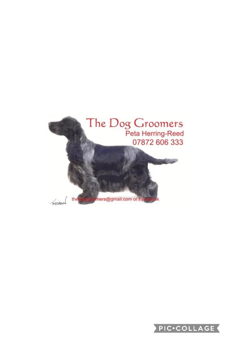 The Dog Groomers