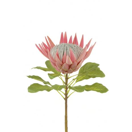 0015 King Protea faux flower stem