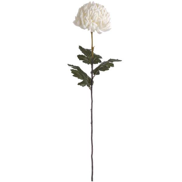 1119 White Chrysanthemum stem