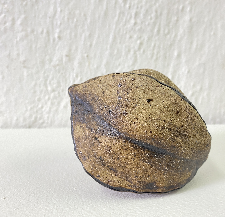 Magic seed pod