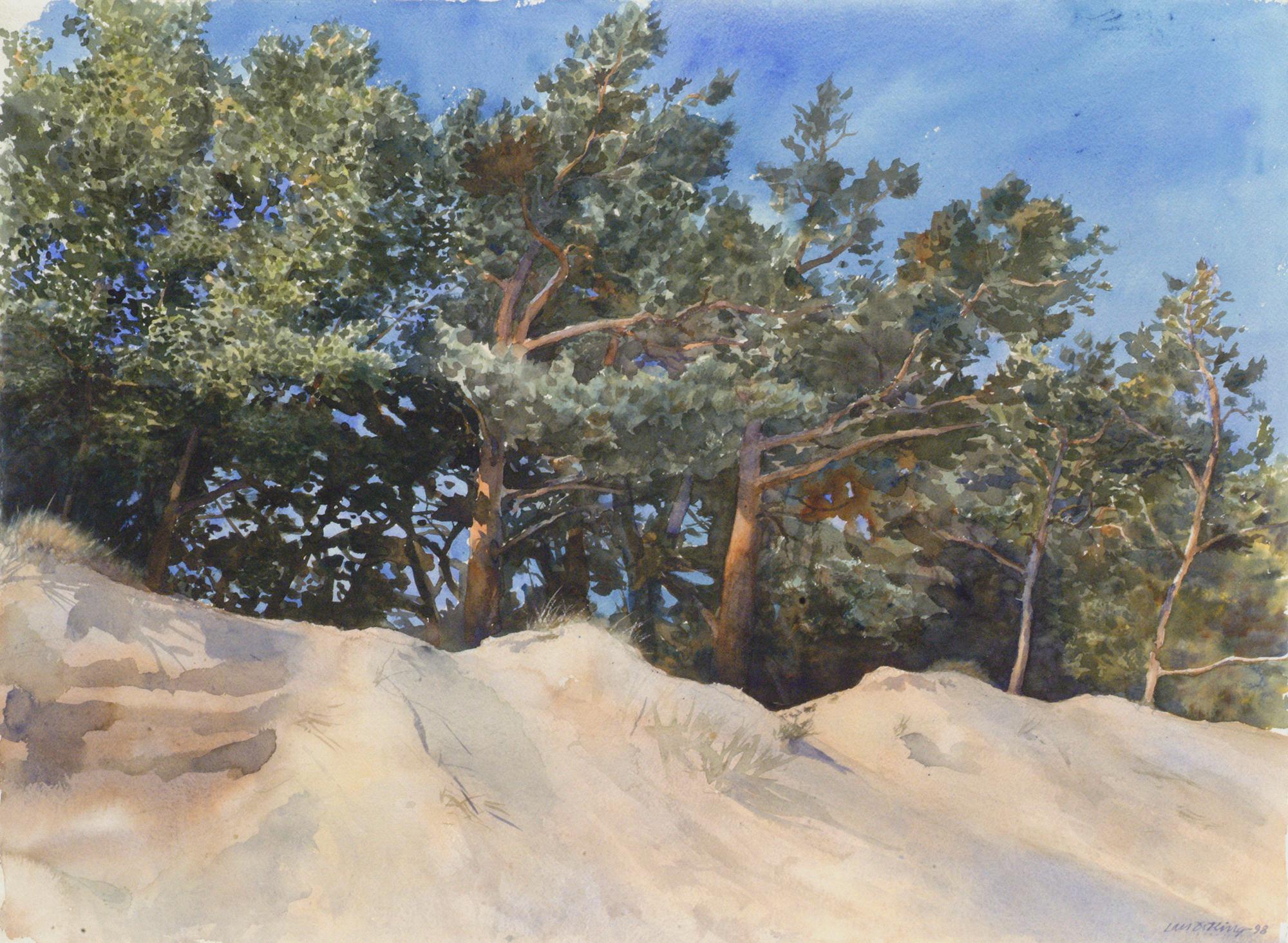 Lars Östling - Sanddyn, akvarell