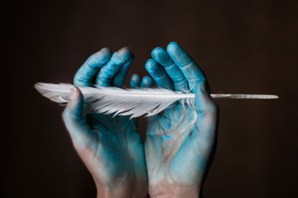 Blue feather - Photo by Jessica Lindgren Wu