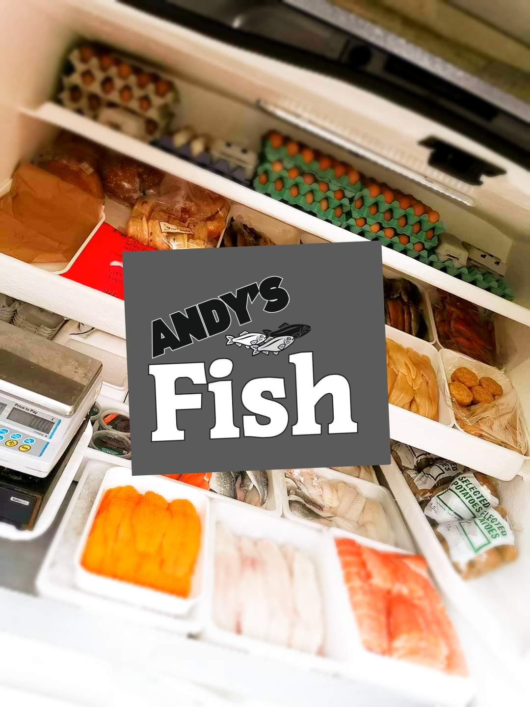 Andy's Fish