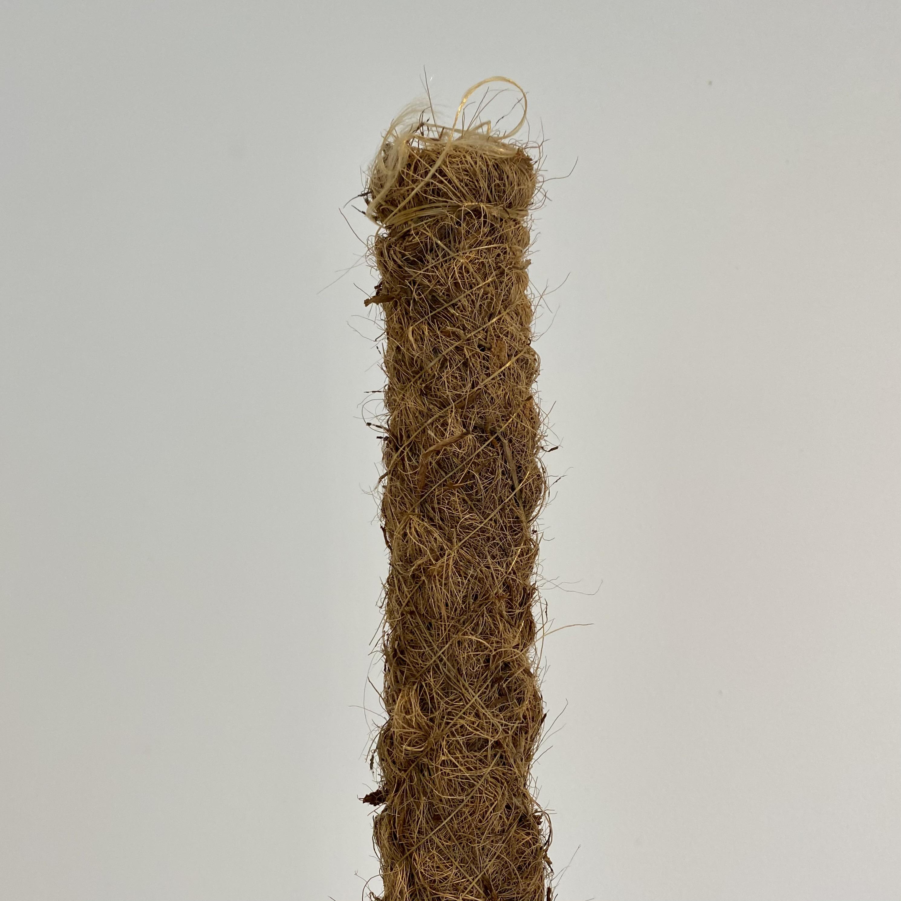 Moss pole (80cm)