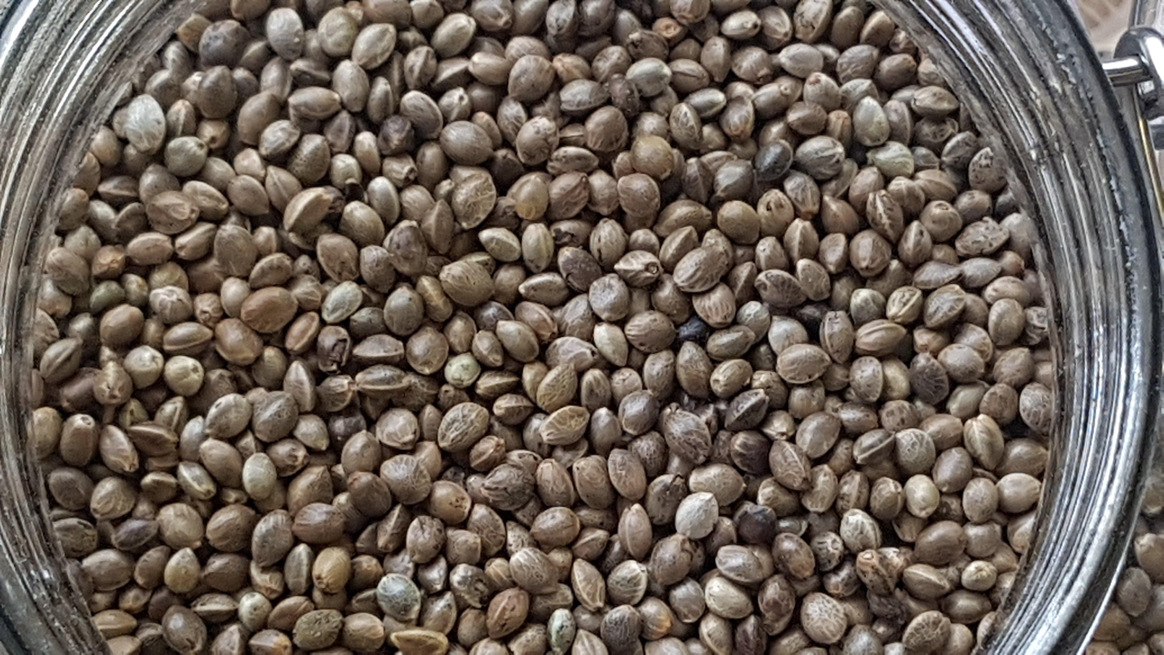 Hemp Seeds -Organic - per 100g