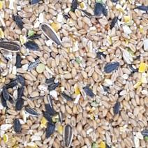Bird Seed - Per 100g