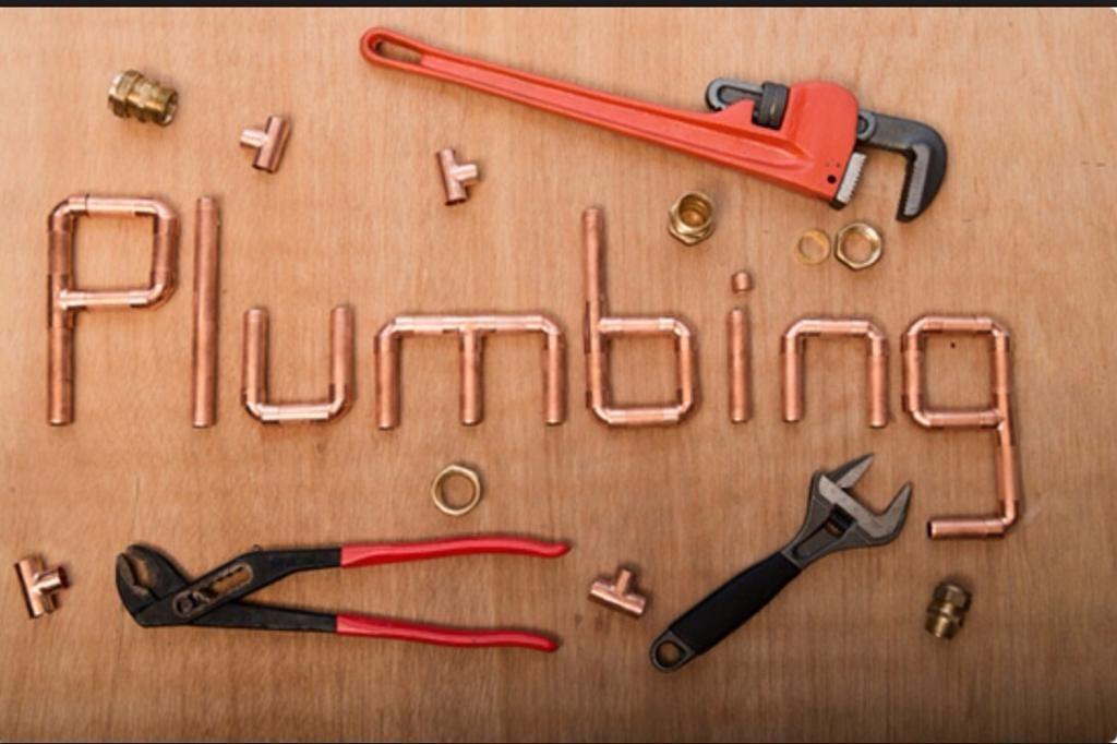 Plumbing Diagnosis/Minor Repair