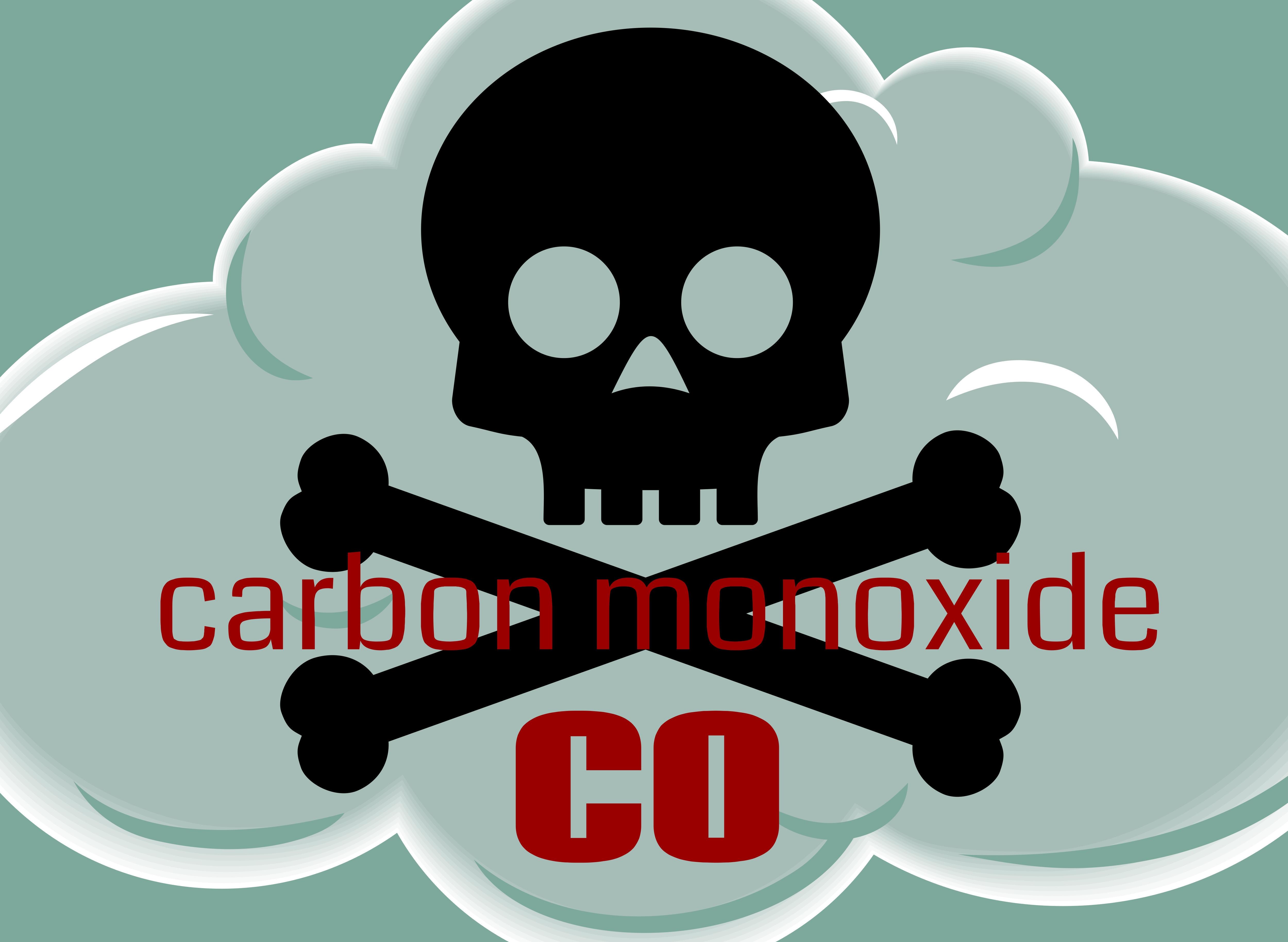 Carbon monoxide investigation
