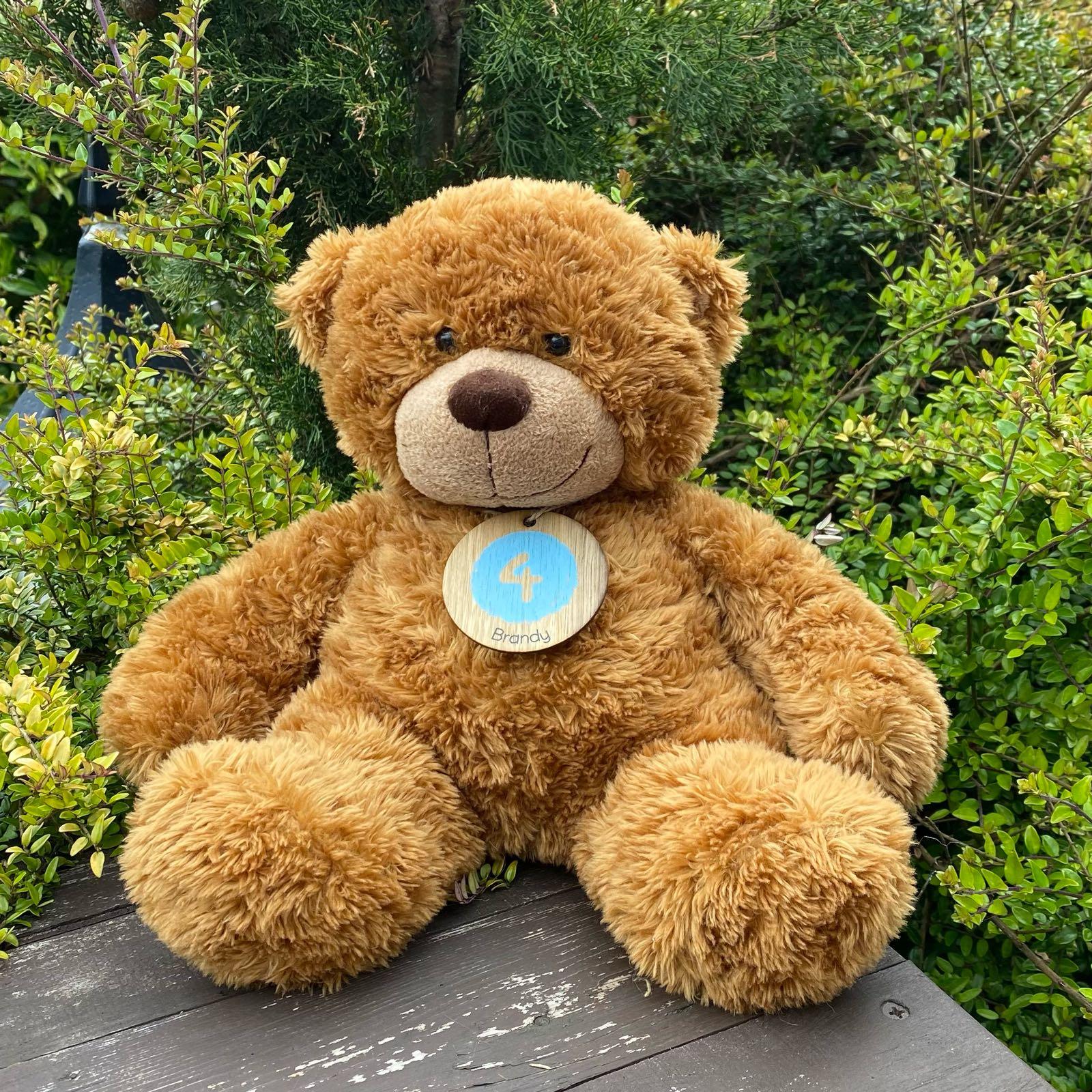 TEDDY BRANDY