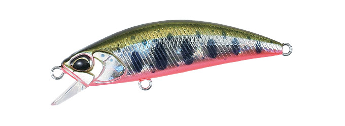 Realis Rozante,77SP, Yamame Red Belly