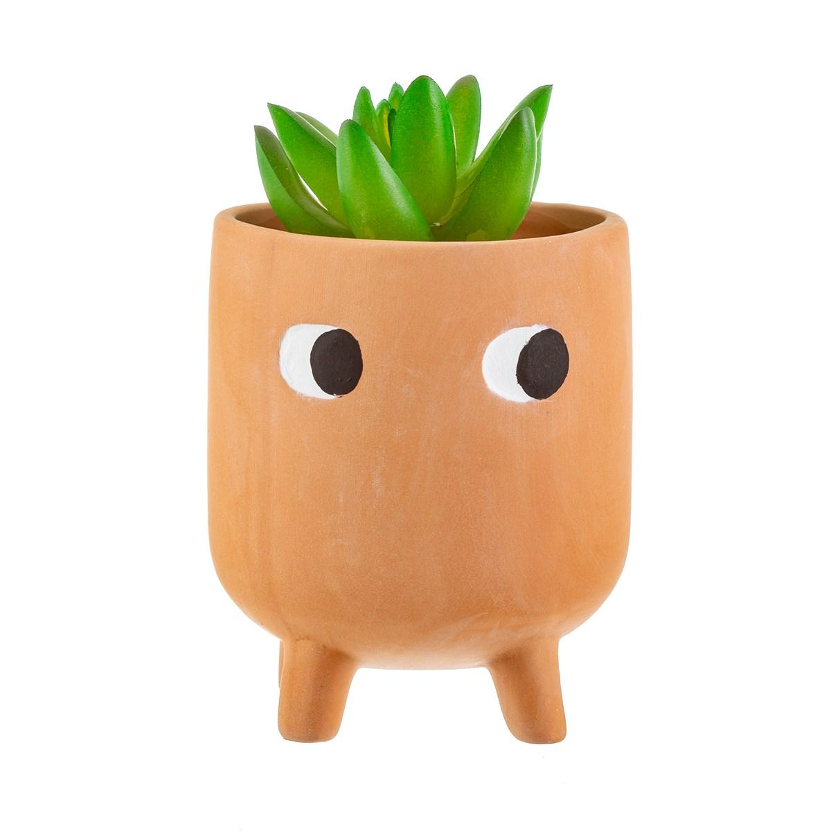 Little Leggy Planter