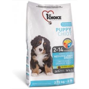 1st Choice Puppy Medium & Large