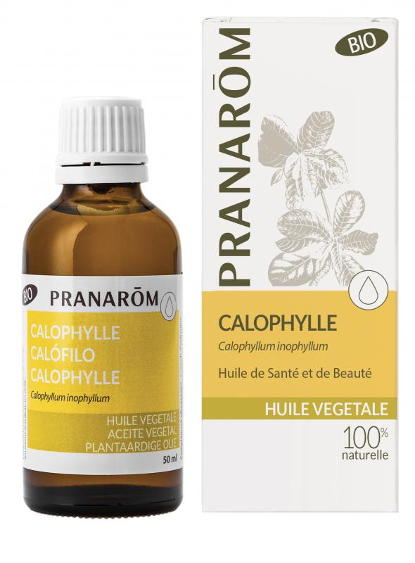 Pranarôm Calophylle vegetable oil (Calophyllum inophyllum) 50 ml 4536