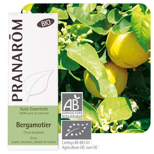 Pranarôm Bergamot essential oil (Citrus bergamia) 10 ml 4536