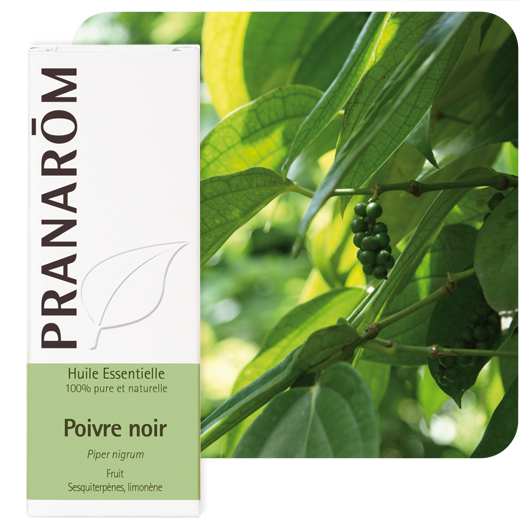 Pranarôm Black pepper essential oil (Piper nigrum) 5 ml
