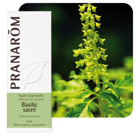 Pranarôm Holy basil essential oil (Ocimum sanctum) 5 ml 4536