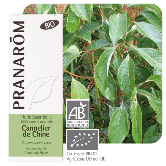 Pranarôm Chinese cinnamon essential oil (Cinnamomum cassia) 10 ml 4536