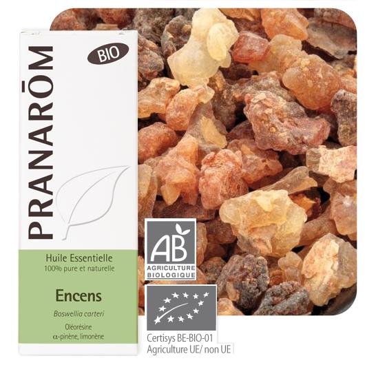 Pranarôm Frankincense essential oil (Boswellia carteri) 5 ml 4536