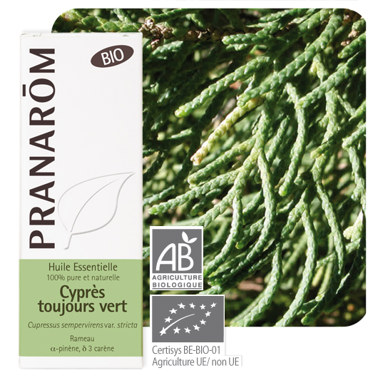 Pranarôm Cypress essential oil (Cupressus sempervirens var. stricta) 10 ml 4536